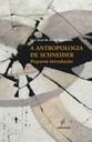 A Antropologia de Schneider