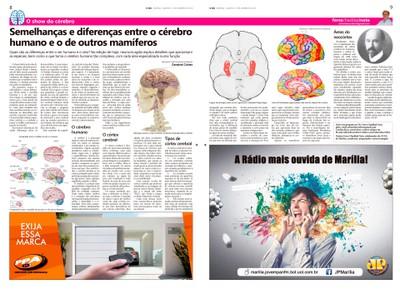 Coluna O Show do Cérebro no jornal O Dia, em 13/01/2016