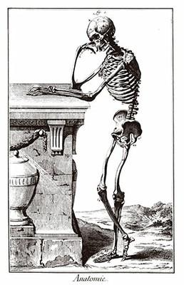 Ilustração Enciclopedia_Anatomia