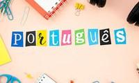 Dia Mundial da Língua Portuguesa: momento para se aperfeiçoar no idioma