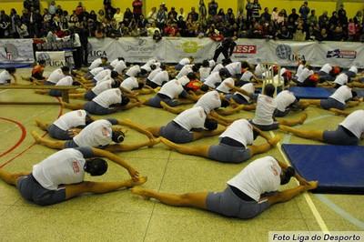 Festival de ginástica 2