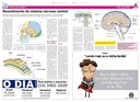 Coluna O Show do Cérebro no jornal O Dia - 11/08/2015