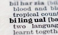 Unil lança curso inédito sobre como desenvolver programas, conteúdos e recursos multimídia para o ensino de inglês